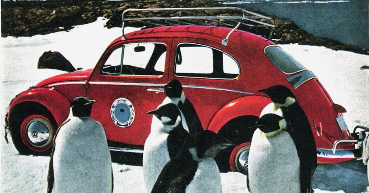 Emilcar blog - curiosità Maggiolino Volkswagen - Antartide